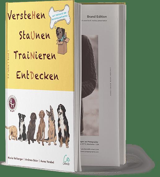 """Kinderbuchreihe """"VersteHen,StaUnen,TraiNieren,EntDecken"""" von Aurea Verebes und Andreas Baier."""